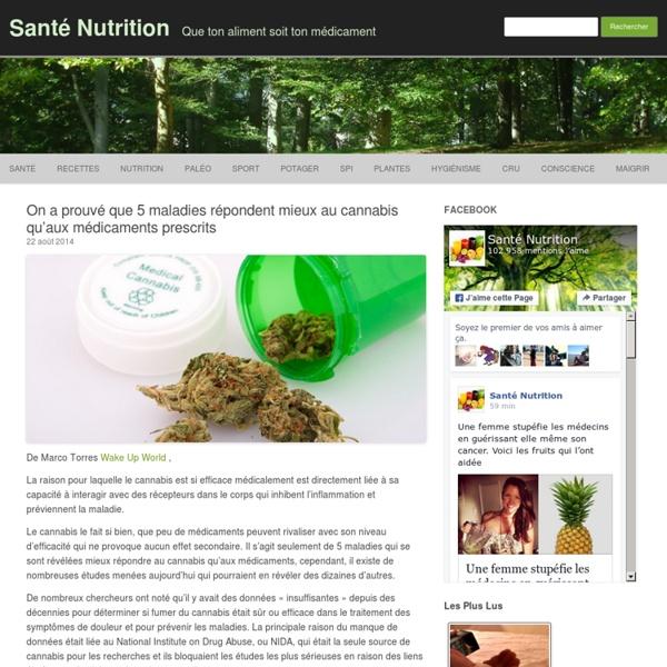 On a prouvé que 5 maladies répondent mieux au cannabis qu'aux médicaments prescrits
