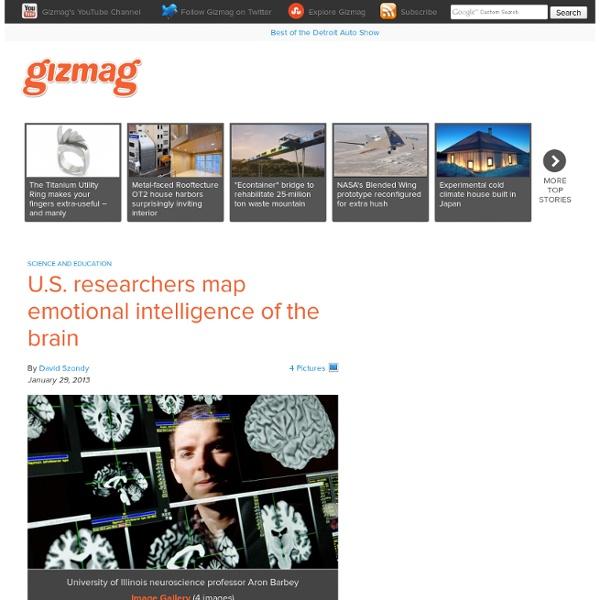U.S. researchers map emotional intelligence of the brain