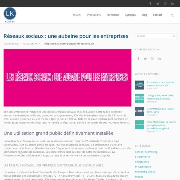 Réseaux sociaux : une aubaine pour les entreprises - LK Conseil