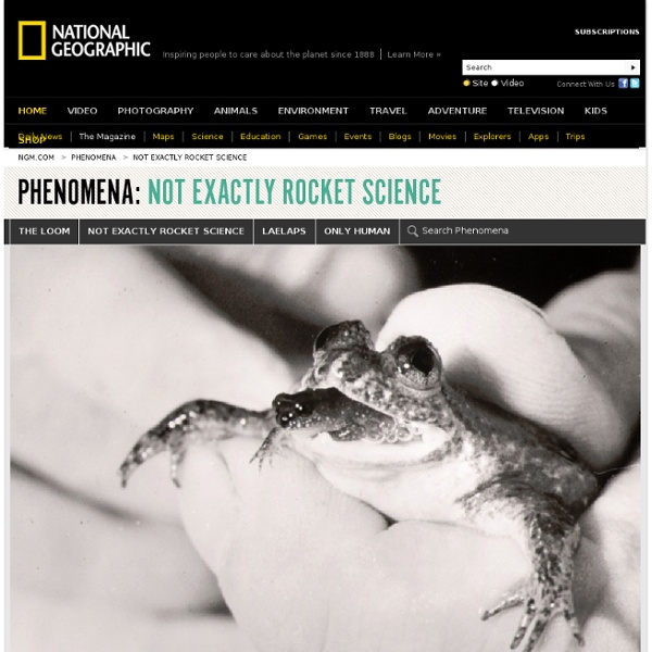 Resurrecting the Extinct Frog with a Stomach for a Womb