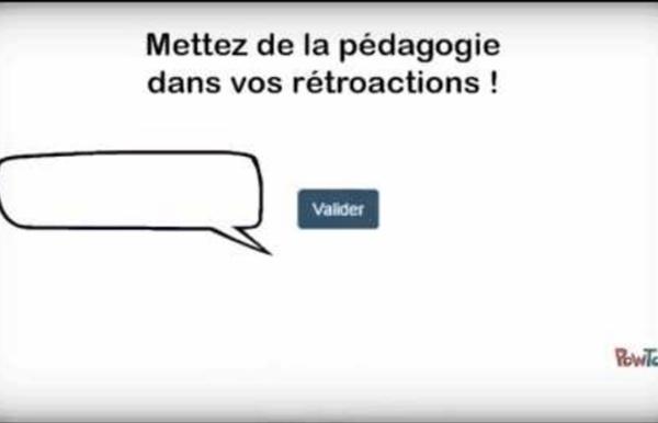 La rétroaction pédagogique dans les exercices autocorrectifs