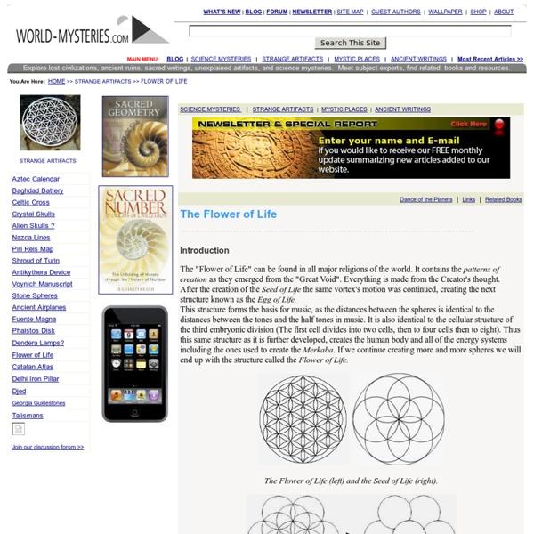 Sacred Geometry: Flower of Life
