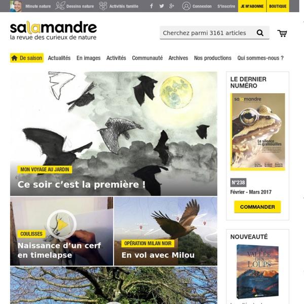 La Salamandre - La revue des curieux de nature