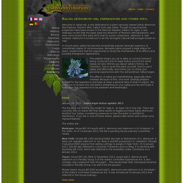 Salvia.net - Salvia divinorum usage, expériences et autre info