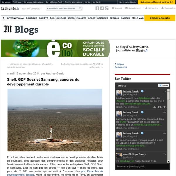 Shell, GDF Suez et Samsung, cancres du développement durable