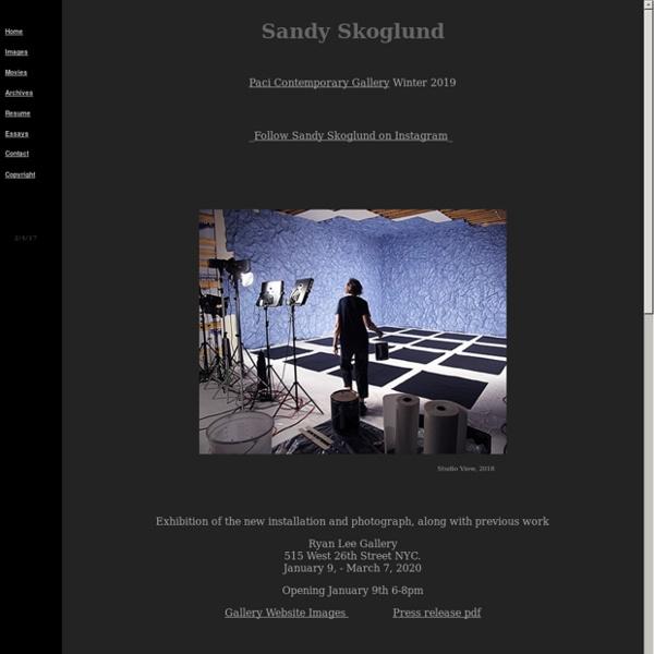 Sandy Skoglund Art Site