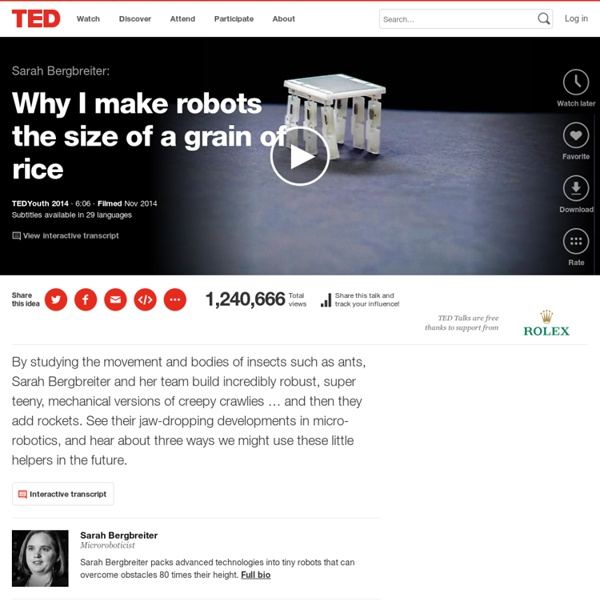 Sarah Bergbreiter: Why I make robots the size of a grain of rice
