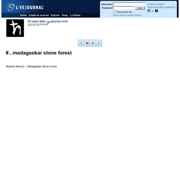 1 ???? ????? - #...madagaskar stone forest
