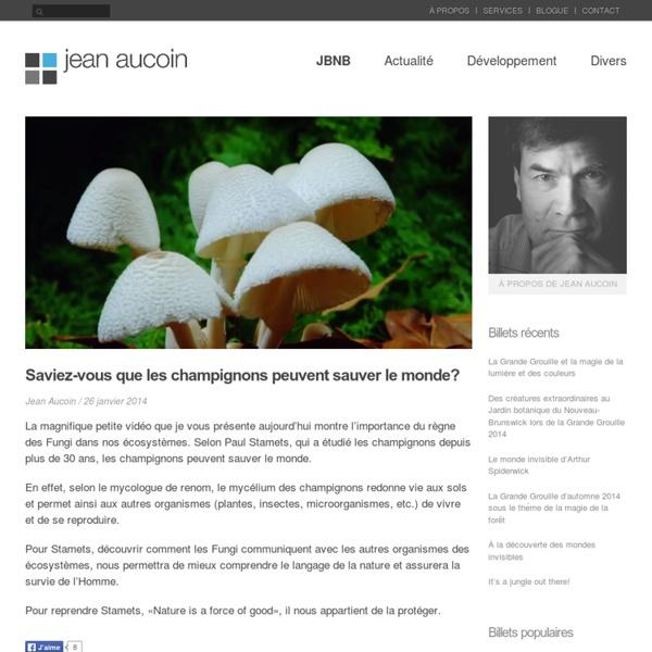 Saviez-vous que les champignons peuvent sauver le monde? - Edmundston en ligne