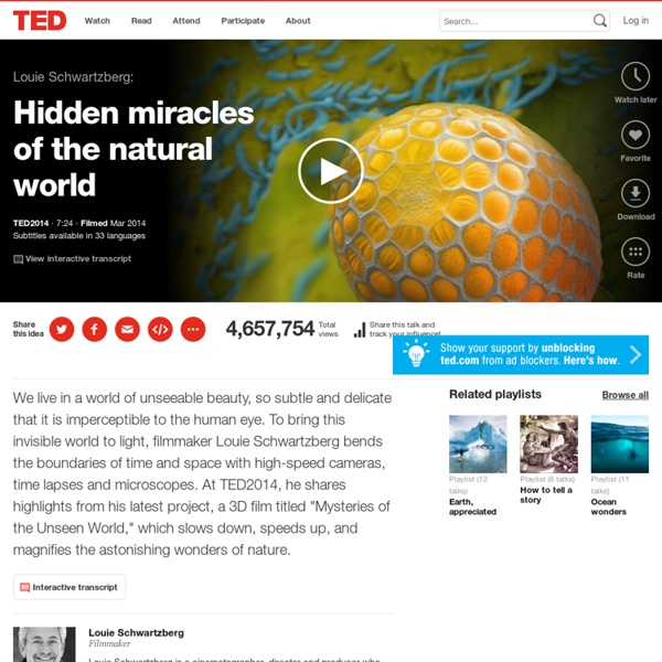 Louie Schwartzberg: Hidden miracles of the natural world