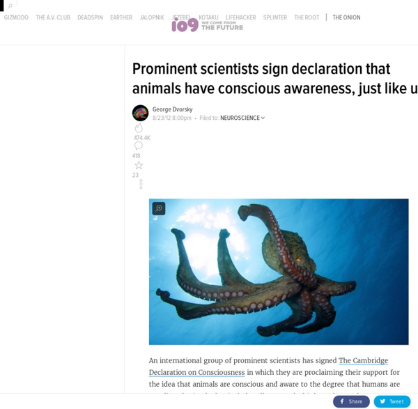 Prominent scientists sign declaration that animals have conscious awareness, just like us