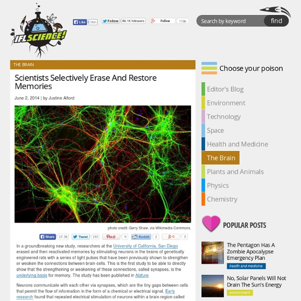 Scientists Selectively Erase And Restore Memories