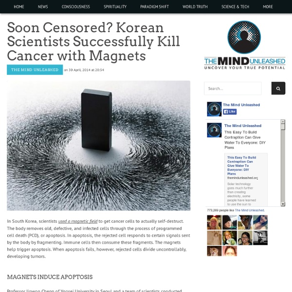 Soon Censored? Korean Scientists Successfully Kill Cancer with Magnets