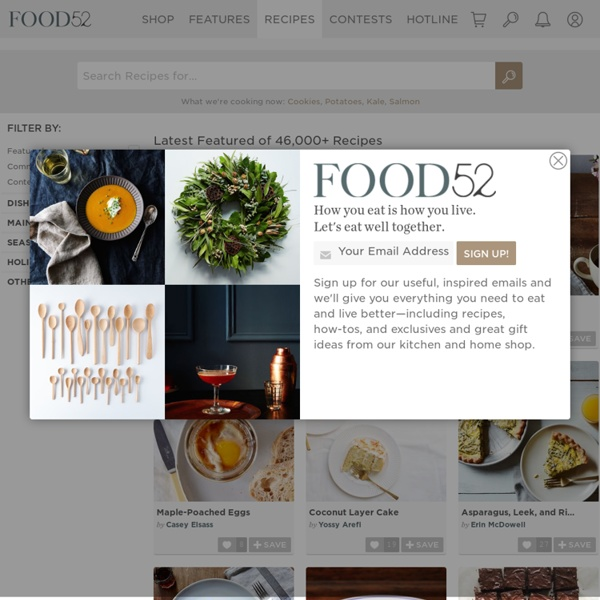 Recipes - Food52 - food community, recipe search and cookbook contests