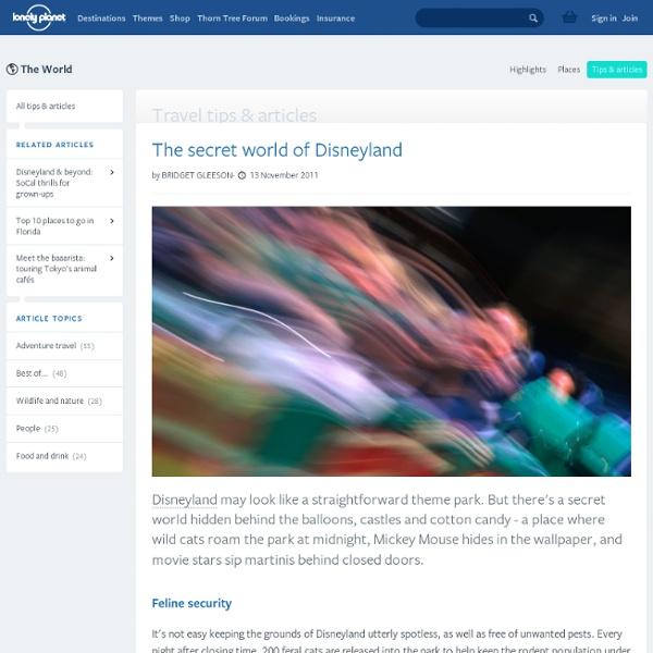 The secret world of Disneyland