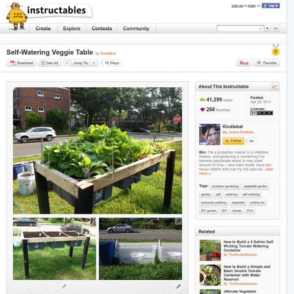 Self-Watering Veggie Table