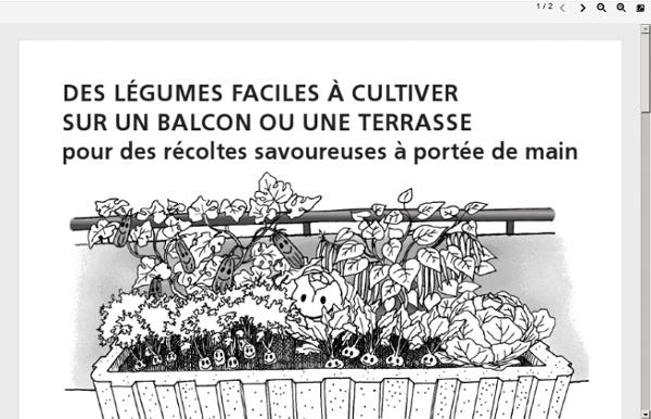Legumes-balcon