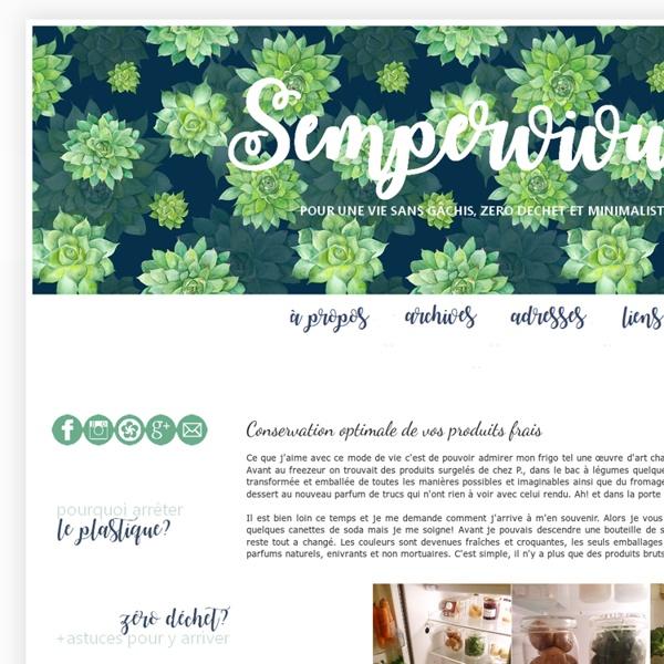 Une vie sans gâchis: Conservation optimale de vos produits frais