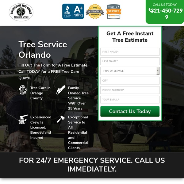 Tree Service Removal Orlando & Tree Trimming [Voted #1] □