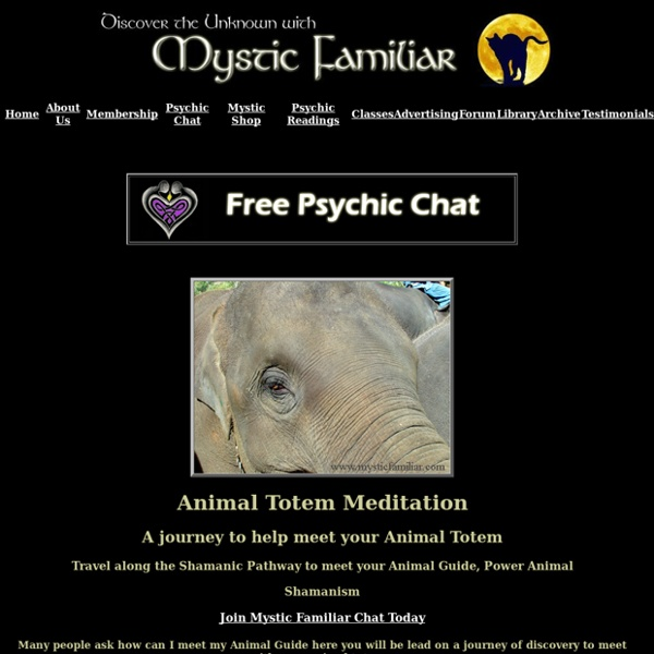 Shamanism, Journey to meet your Animal Totem, Power Animal, Spirit Guide