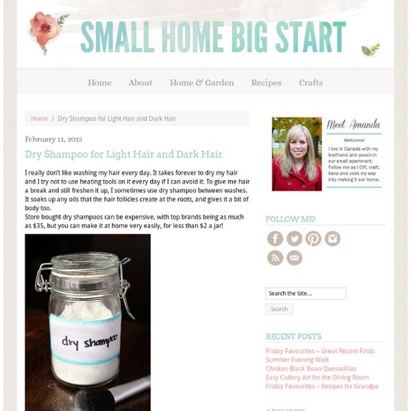 Dry Shampoo for Light Hair and Dark Hair ‹ Small Home Big Start