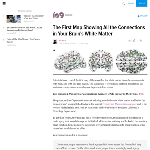 The First Map Showing All the Connections in Your Brain's White Matter