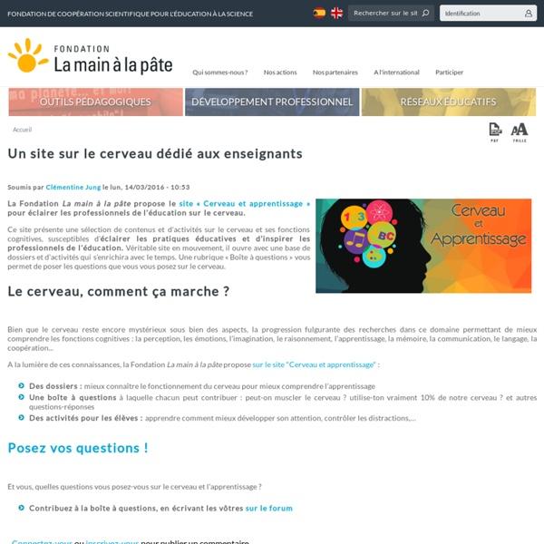 Un site sur le cerveau dédié aux enseignants