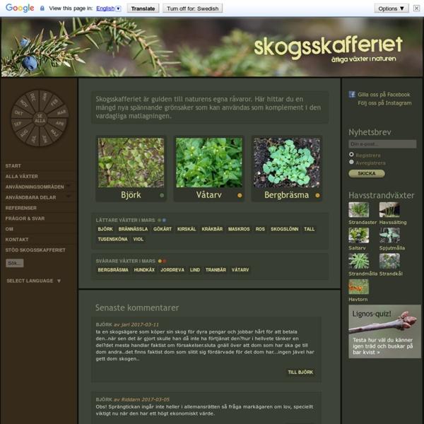 Skogsskafferiet.se - ätliga växter i naturen