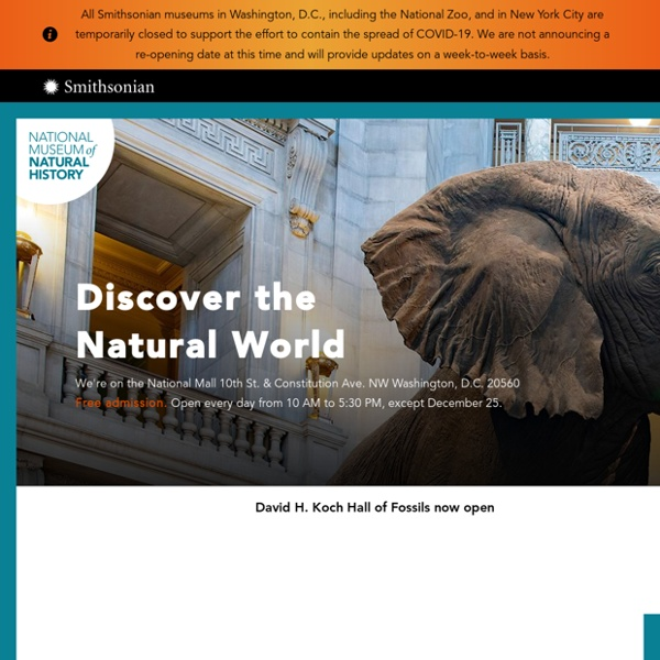 Smithsonian Institution National Museum of Natural History NMNH