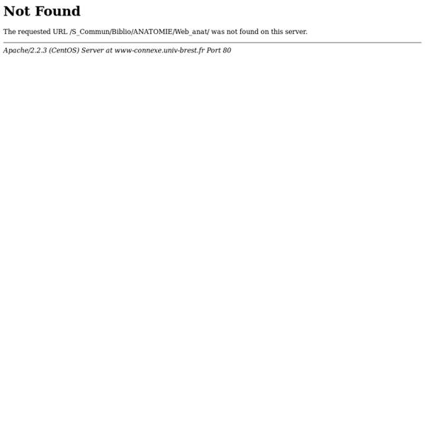 Sommaire Schémas anatomiques