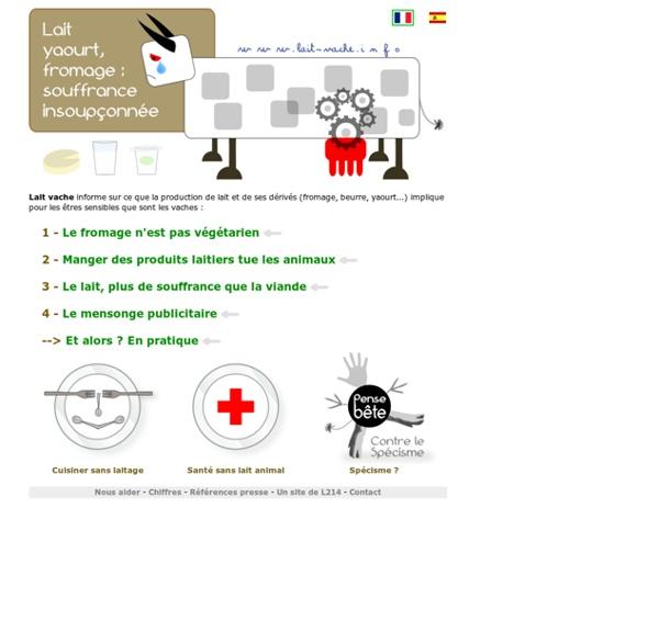 Lait Vache info