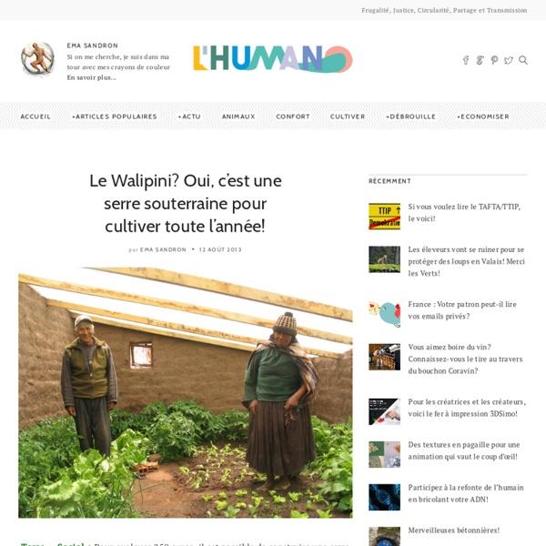 Le Walipini? Oui, c'est une serre souterraine pour cultiver toute l'année!
