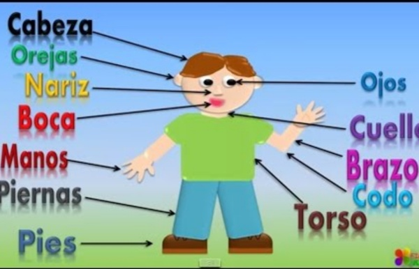 Las Partes Del Cuerpo Para Niños, Our Body Parts In Spanish For Kids (Video Infantil)