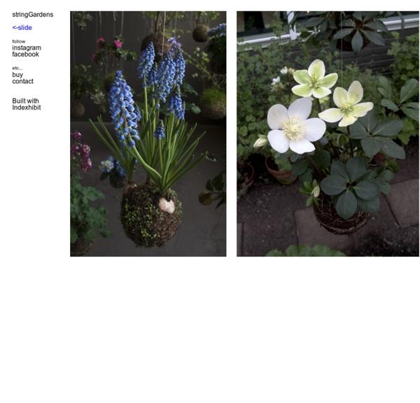 : string_gardens