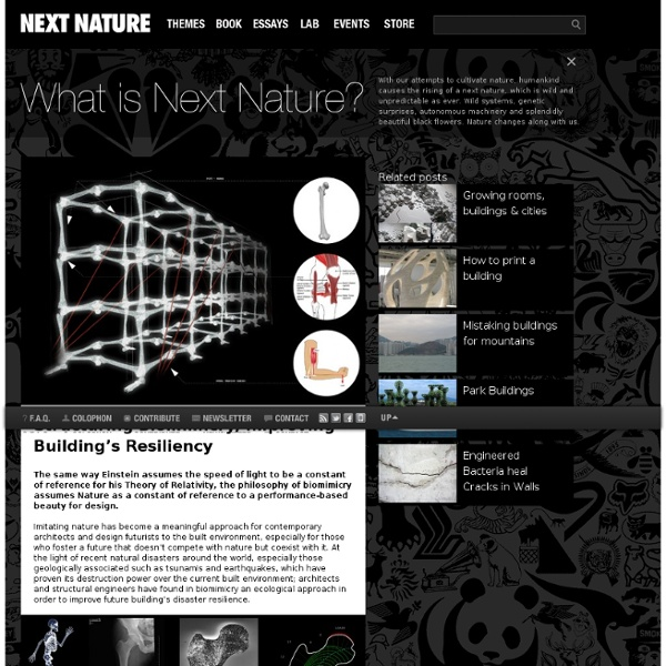 Structuring Biomimicry, Improving Building's Resiliency