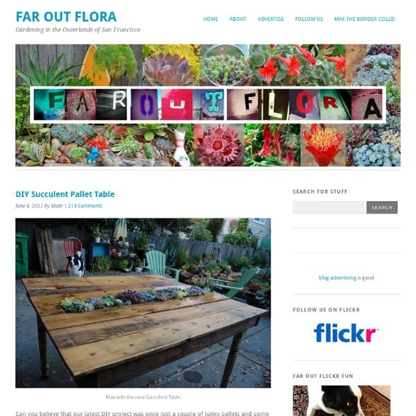 DIY Succulent Pallet Table