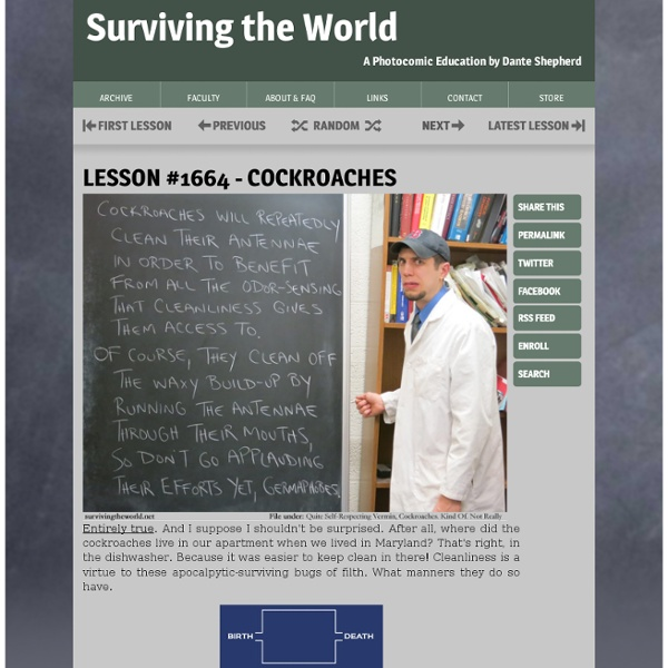 Surviving the World: A Photocomic Education, Updated Seven Days A Week