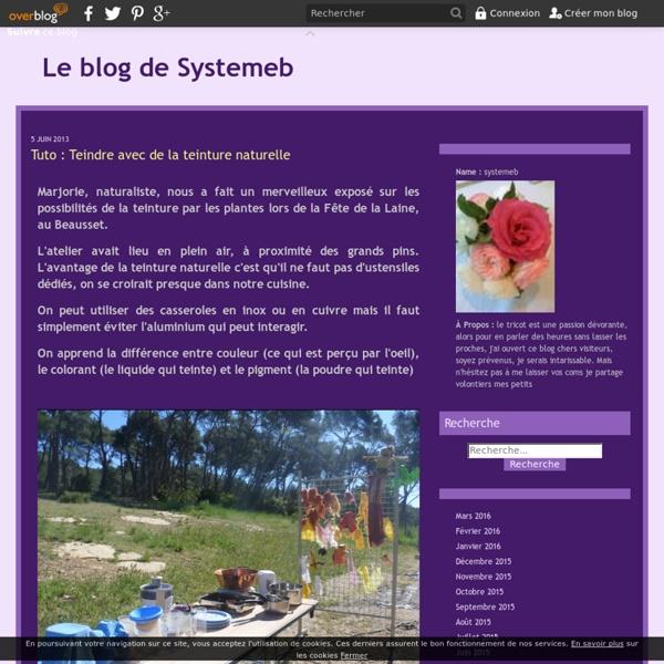 Tuto : Teindre avec de la teinture naturelle - Le blog de Systemeb