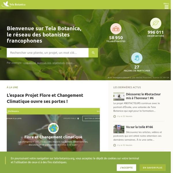 Tela Botanica - Accueil