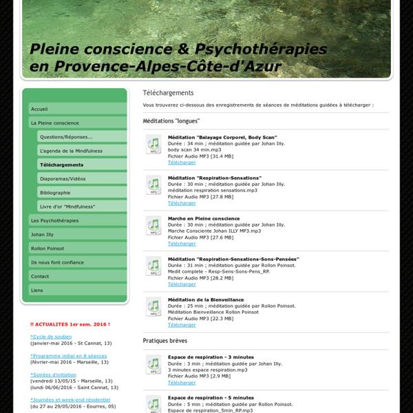 petit cahier d exercices de pleine conscience pdf