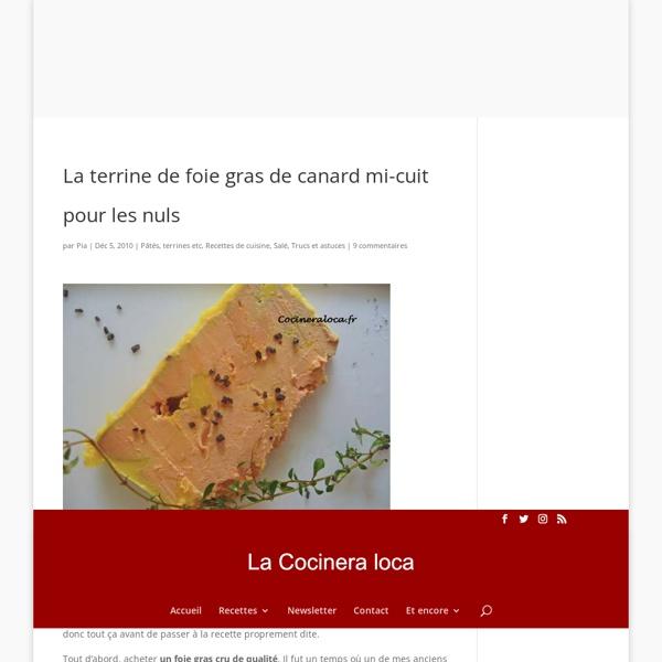 La terrine de foie gras de canard mi-cuit pour les nuls