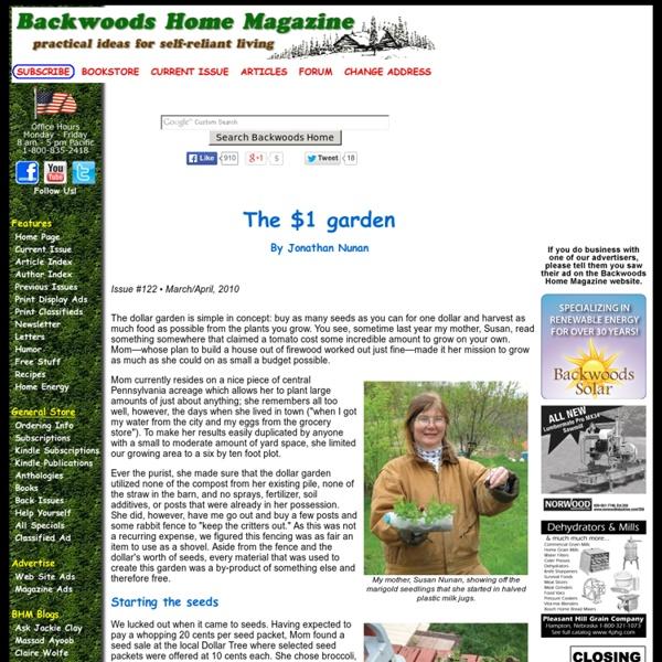 The $1 garden by Jonathan Nunan
