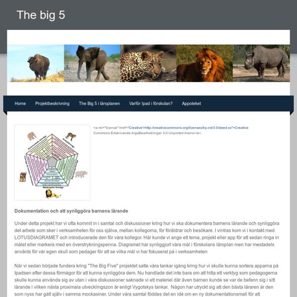 Dokumentationsverktyg - The big 5