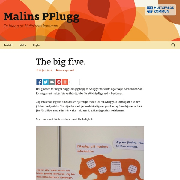 Malins PPlugg