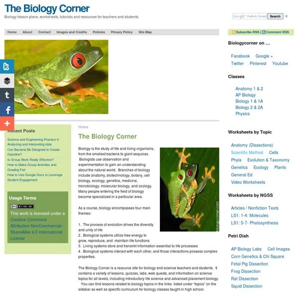 The Biology Corner