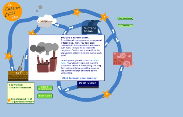 The Carbon Cycle Game