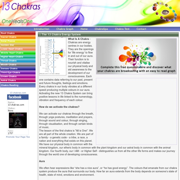 The 13 Chakra System