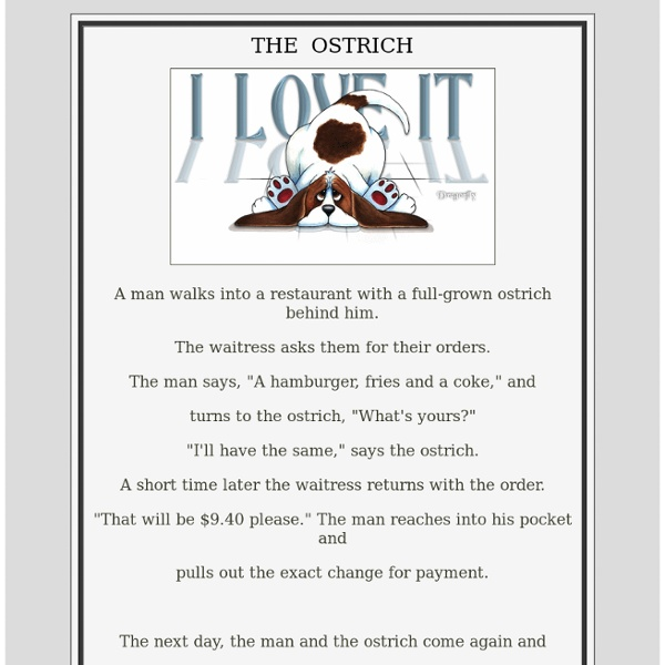The OSTRICH Story