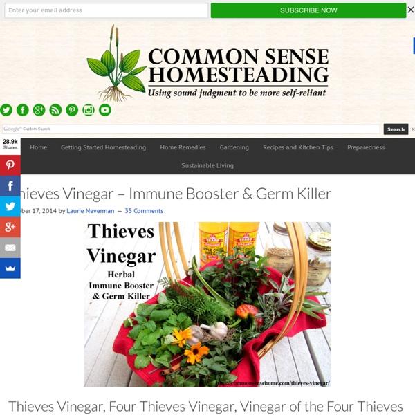 Thieves Vinegar - Immune Booster & Germ Killer
