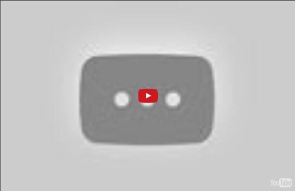 Youtube Top Ten Funniest Videos